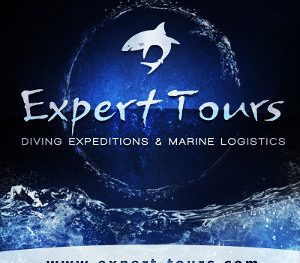 Expert Tours